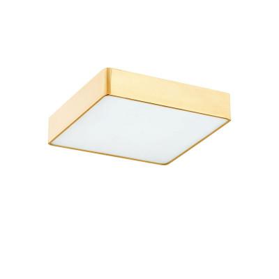 Mała lampa sufitowa / plafon LED ATLANTIS mosiądz ARGON