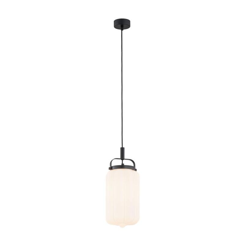 Ceiling lamp / pendant lamp DENVER 4106 ARGON