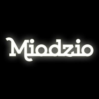Świecący napis Miodzio 65cmx17cm Ledon TWÓRCZYWO