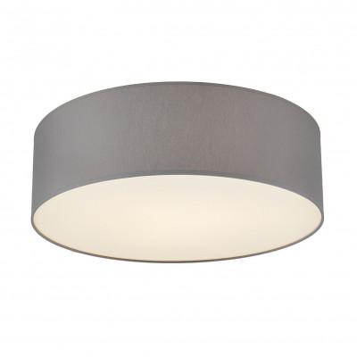 Space L Plafond / Wall Lamp Grey