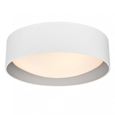 Vero L Plafond / Wall Lamp White / Silver