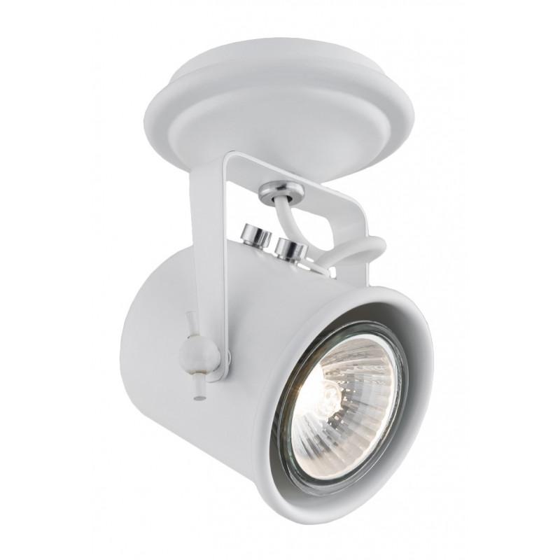Regulowany reflektor sufitowy Alter biały KASPA